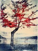 Red Leaves Posters - The Red Tree at Okanagan Lake Poster by Tara Turner
