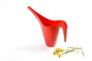 The Red Watering Can With Flowers Print by Lynn Berreitter