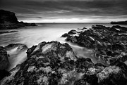 Sea Scape Metal Prints - The Reef Metal Print by Andy Astbury