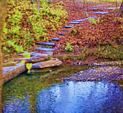 Stepping Stones Prints - The Reflecting Pool Print by Diana Cox