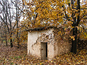 Issam Hajjar Posters - The remote autumn hut Poster by Issam Hajjar