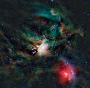 Star Clusters Posters - The Rho Ophiuchi Cloud Complex Poster by Stocktrek Images