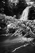 Flooding Prints - the river at the Gleno or Glenoe Waterfall beauty spot county antrim Print by Joe Fox
