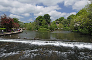 Waterway Prints - The Riverside and Weir - Bakewell Print by Rod Johnson