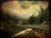 Cabin Wall Photo Originals - The Road to Everywhere by Leah Moore