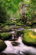 Rustic Mill Prints - The Roaring Fork and Reagans Mill Print by Thomas Schoeller