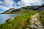 Llyn Idwal Prints - The Rocky Path Print by Adrian Evans
