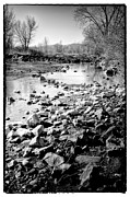 South Platte River Prints - The Rocky South Platte River Print by David Patterson