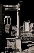 Italians Posters - The Roman Forum Poster by Darren Burroughs