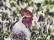 Brown Toned Art Painting Prints - The rooster portrait Print by Odon Czintos