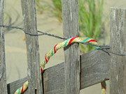 Emerald Coast Originals - The Rope by Emeraldcoast Gallery