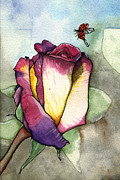 Nora Blansett Painting Framed Prints - The Rose Framed Print by Nora Blansett