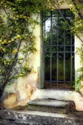 Trellis Posters - The Rose Vined Door Poster by Lynn Andrews