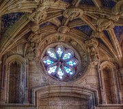 Cindy Nunn Art - The Rose Window by Cindy Nunn