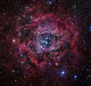 Monoceros Prints - The Rosette Nebula Print by Robert Gendler