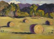 Hay Bales Originals - The Round Bales by Zanobia Shalks