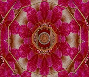 Meditative Mixed Media - The Sacred Orchid Mandala by Pepita Selles