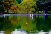 Central Park Prints - The Sailboat Lake in the Park Print by Christopher Kirby