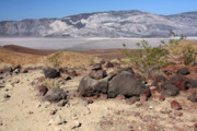 Valleys Photos - The Salt Flats of Death Valley by Christine Till