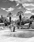Midcentury Prints - THE SANDPIPER POOL BW Palm Desert Print by William Dey