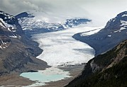 Saskatchewan Framed Prints - The Saskatchewan Glacier, Canada Framed Print by Bob Gibbons