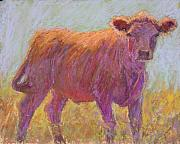Calf Pastels - The Scout by Susan Williamson