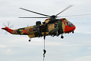 Component Photo Prints - The Sea King Helicopter Of The Belgian Print by Luc De Jaeger
