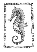 Extinct And Mythical Drawings Posters - The Seahorse and The Equine Poster by Zelde Grimm