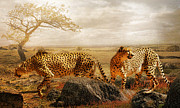 Cheetah Digital Art Metal Prints - The Search for Tomorrow Metal Print by Trudi Simmonds