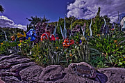 Friends Photo Originals - The Seas With Nemo And Friends HDR by Jason Blalock