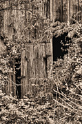 Haunted Barn Photos - The Secret Door by JC Findley