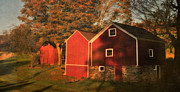 Red Barns Metal Prints - The Sedgwick Barns Metal Print by Thomas Schoeller