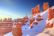 Park Scene Prints - The Sentinal Bryce Canyon Print by (C) Rob Little