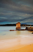 Boat Shed Prints - The Shed - Camp Cove  Print by Mark Lucey
