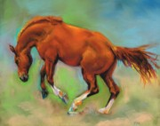 Horses Drawings Metal Prints - The Sheer Joy of It Metal Print by Frances Marino