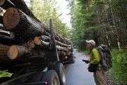 Fay Photos - The Size Of A Truckload Of Redwood Logs by Michael Christopher Brown