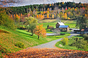 Vermont Fall Foliage Framed Prints - The Sleepy Hollow Farm of Pomfret Framed Print by Thomas Schoeller