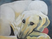 The North Pastels Prints - The Sloughi Sighthound Print by Beryl Stewart