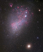 Starfield Posters - The Small Magellanic Cloud, Ngc 292 Poster by Robert Gendler