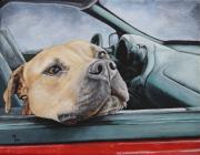 Vick Paintings - The smell of Freedom by Mary-Lee Sanders