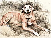 Rust Pastels Metal Prints - The Smiling Dog Metal Print by Kathryn Donatelli
