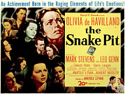 Films By Anatole Litvak Prints - The Snake Pit, Olivia De Havilland Print by Everett