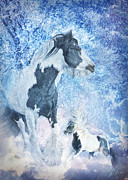 Gypsy Stallion Posters - The Snow Prince Poster by Jamie Mammano