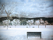 Benches Digital Art Posters - The Snow Storm Poster by Tara Turner