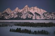 Snow Landscapes Metal Prints - The Snowcapped Grand Tetons Metal Print by Dick Durrance Ii
