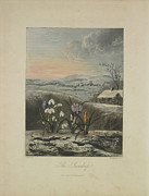 The Snowdrop Print by Robert John Thornton