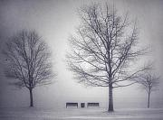 Benches Prints - The Soft Breath of Winter Print by Tara Turner