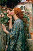 Women Glass Framed Prints - The Soul of the Rose Framed Print by John William Waterhouse
