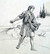 Parable Drawings Posters - The Sower Poster by Ron Cantrell