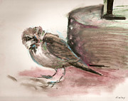 Birds Pastels Prints - The Sparrow Print by David Finley